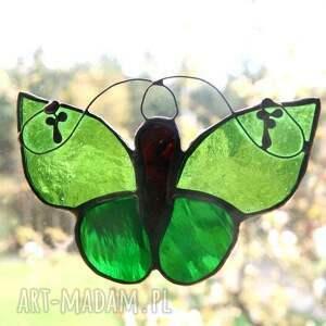 witraże motyl zieleniak zielisty