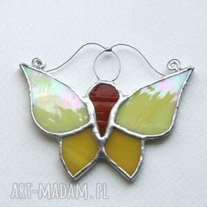 czerwone witraże motyl żółciak cytryniak