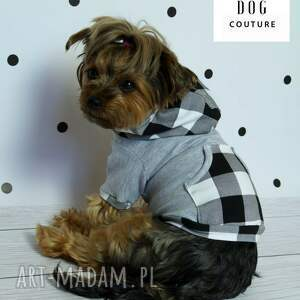 szare zwierzaki kurtka bluza z kapturem dla psa.