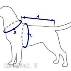 ubranko zwierzaki bluza z kapturem dla psa