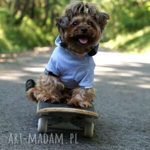 zwierzaki ubranko bluza z kapturem dla psa.