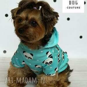 piesek zwierzaki ubranie dla psa. ratlerek ubranko
