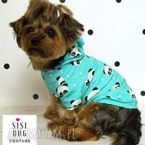 zwierzaki piesek ubranie dla psa. ratlerek ubranko