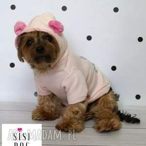 zwierzaki pies ubranko dla psa