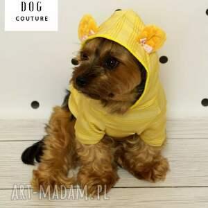 szczeniak zwierzaki ubranko dla psa