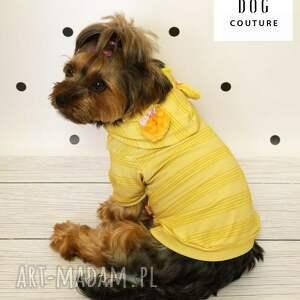zwierzaki szczeniak ubranko dla psa